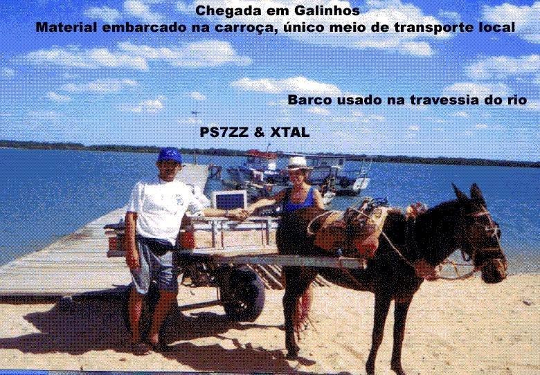galinhos1